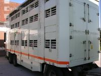 Tiertransporte 13