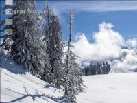 Winter im Gebirge 9
