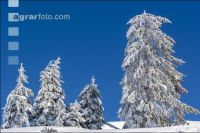 Winter im Gebirge 4